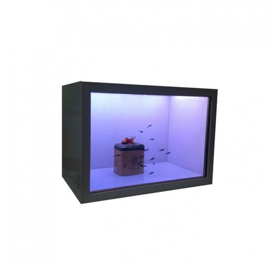 42'' Transparent LCD Showcase (NS-TS062)